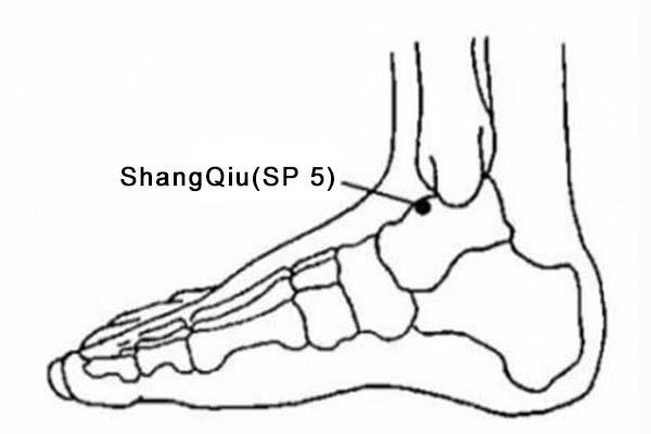 Shangqiu acupoint