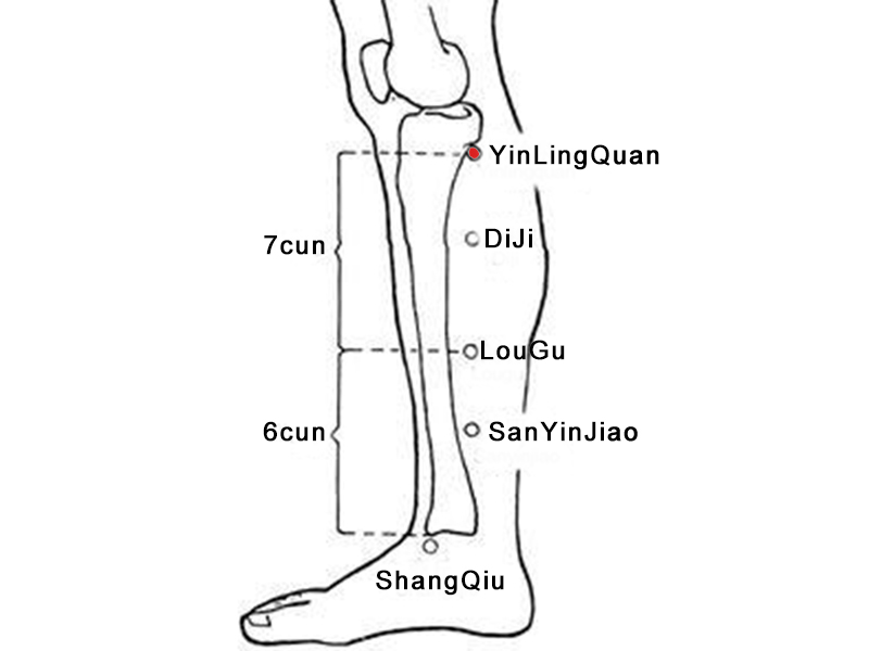 yinlingquan acupoint