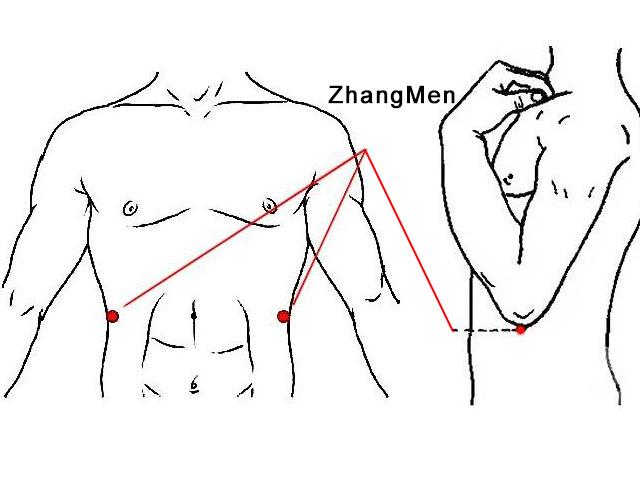 Zhangmen acupoint