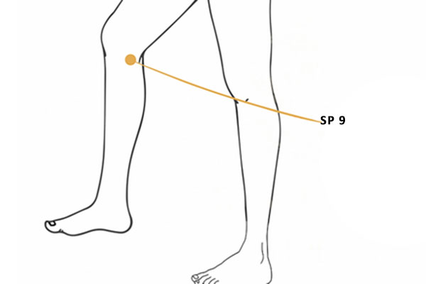 SP 9 point yinlingquan