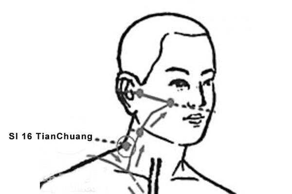 TianChuang acupoint