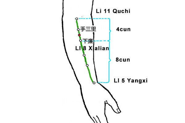 Xialian acupoint