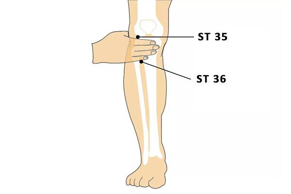 ST 35 dubi