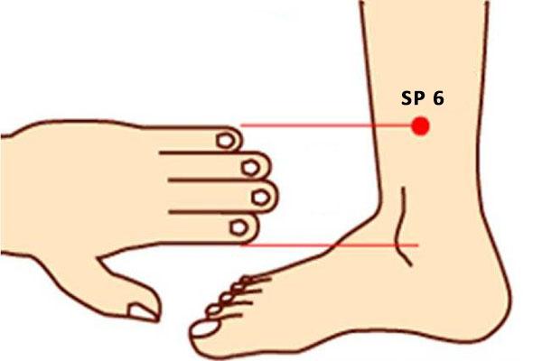 sanyinjiao SP 6