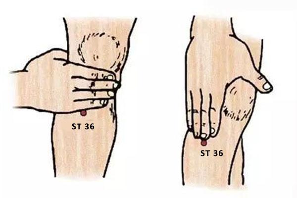 ST 38 Point zusanli