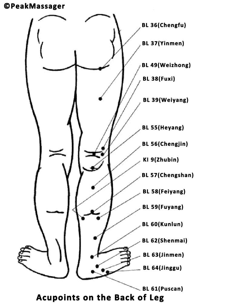 acupressure points in leg